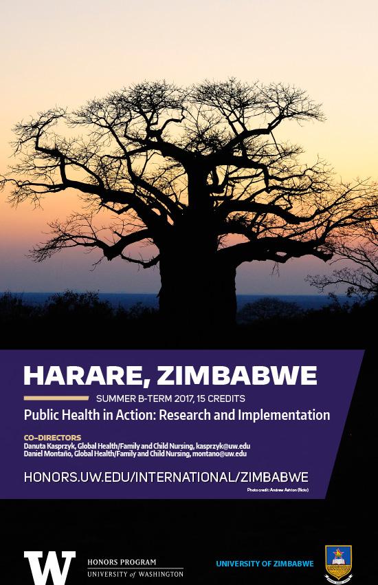 Zimbabwe 2017 mini poster