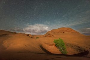 Dunes at night with lots of stars - example of what Bonderman fellows see on their supported journeys