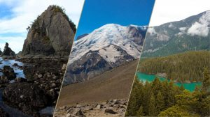 triptych featuring three beautiful wild landscapes from national parks